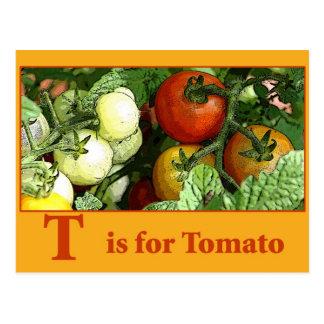 carte de recette de tomate