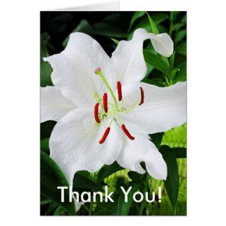 Carte de remerciements avec un lis blanc