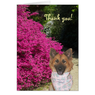 Carte de remerciements mignon de chien
