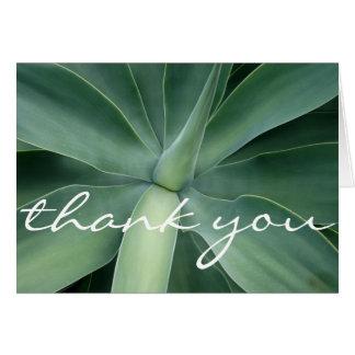 Carte de remerciements succulent