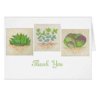 Carte de remerciements succulent de trio