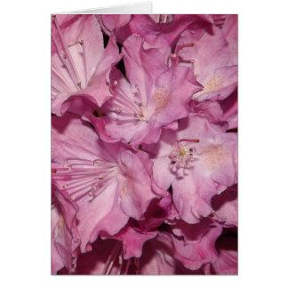Carte de rhododendron