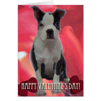 Carte de Saint-Valentin de Boston Terrier