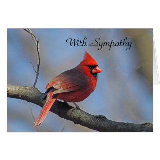 Carte de sympathie cardinale