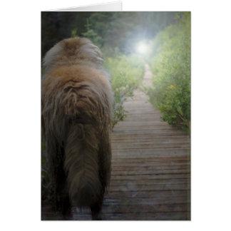 Carte de sympathie de Leonberger