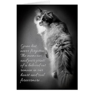 Carte de sympathie pour la perte de chat