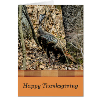 Carte de thanksgiving de faune, Turquie dans la Carte