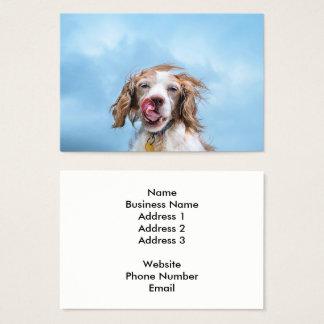 Carte de visite d'industrie d'animal familier
