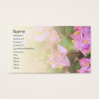 Carte de visite pâle de mélange de bégonia rose
