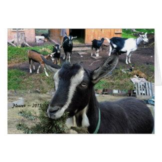 Carte de voeux appelée par chèvre de Flower
