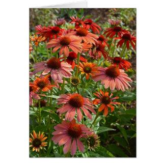 Carte de voeux colorée d'impression de flore