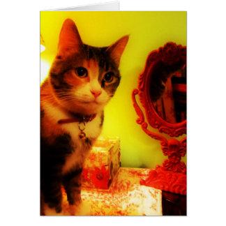 Carte de voeux de chat de miroir, enveloppe