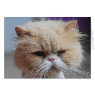 Carte de voeux de chat persan de Ronronnement-fect