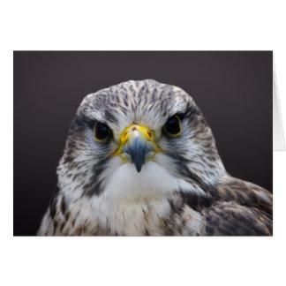 Carte de voeux de faucon de Saker, intérieur vide
