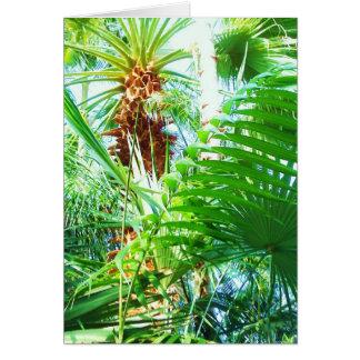 Carte de voeux de jungle