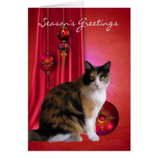 carte de voeux de la saison de chat tigré avec des