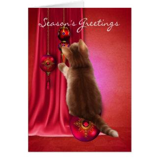 carte de voeux de la saison mignonne de chaton