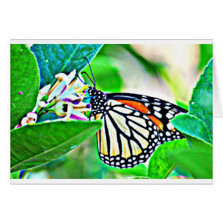 Carte de voeux de papillon de monarque