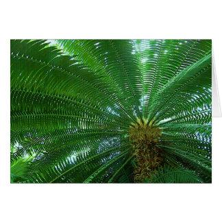Carte de voeux de paume de jungle