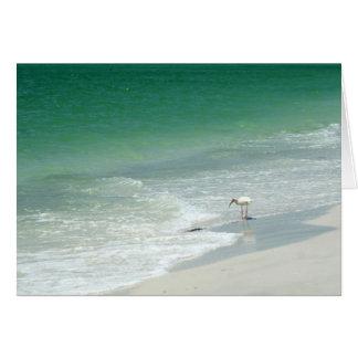 Carte de voeux de plage de la Floride