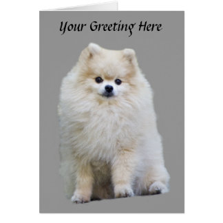 Carte de voeux de Pomeranian