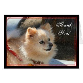 Carte de voeux de Pomeranian de Merci
