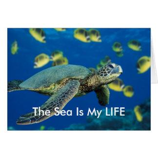 Carte de voeux de tortue de mer verte
