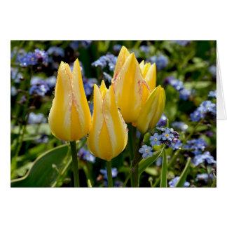 Carte de voeux des tulipes jaunes