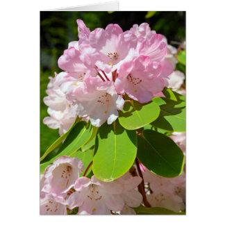 Carte de voeux florale de rhododendron rose