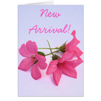 Carte de voeux florale de rose de bébé de nouveau