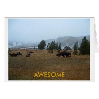 Carte de voeux impressionnante de Buffalo
