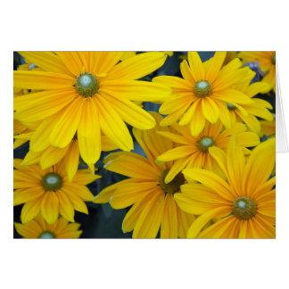 Carte de voeux jaune de tournesol