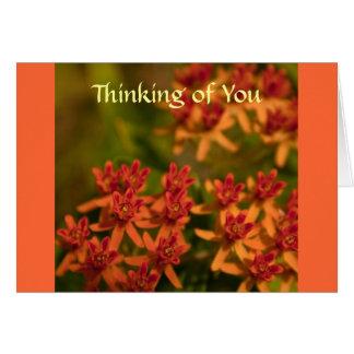 Carte de voeux orange de fleur