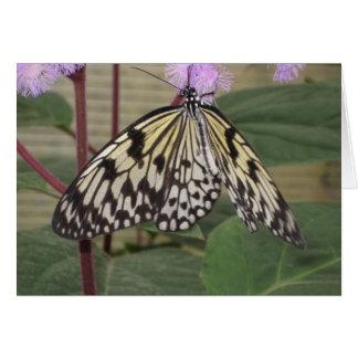 Carte de voeux - papillon de papier de cerf-volant
