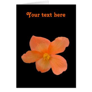 Carte de voeux personnalisable de beau bégonia