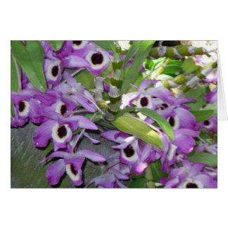 carte de voeux pourpre de blanc d'orchidée