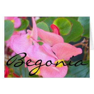 "Carte de voeux - rose ""bégonia """