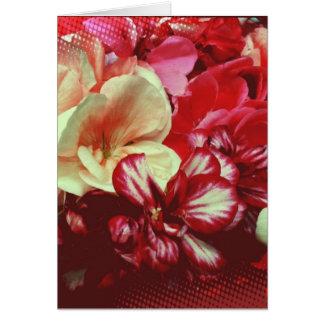 Carte de voeux rose de blanc de géranium
