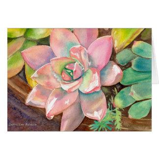 Carte de voeux rose d'Echeveria par Debra Lee