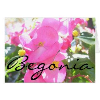 """Carte de voeux - rose, ensoleillé """"bégonia """""""