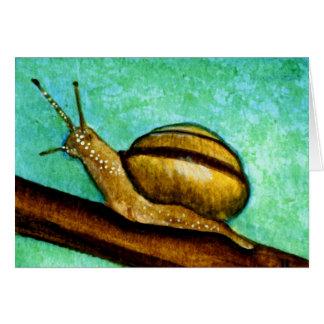 Carte de voeux vierge de l'escargot 1