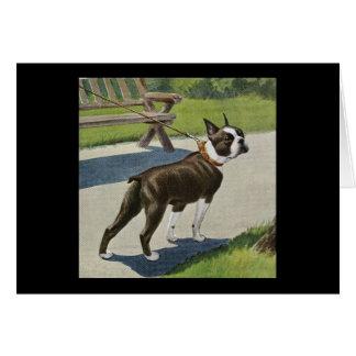 Carte de voeux vintage de Boston Terrier