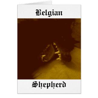 Carte Dents extraordinaires du berger belge
