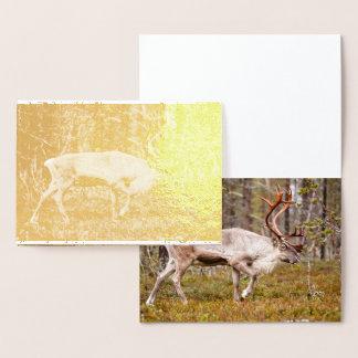 Carte Dorée Renne marchant dans la forêt