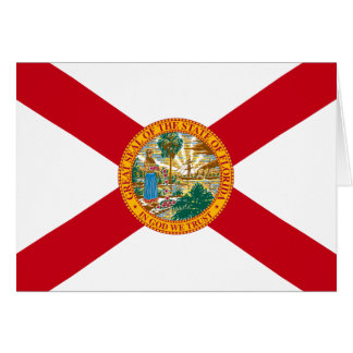 Carte Drapeau de la Floride