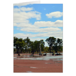 Carte Duckweed_On_The_River_Murray, _Greeting_Card.