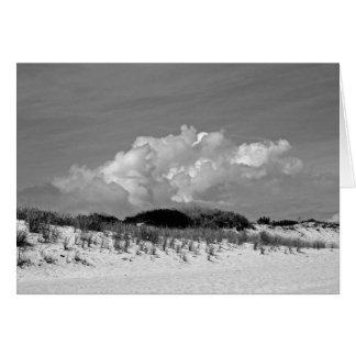 Carte Dune - Montauk, NY