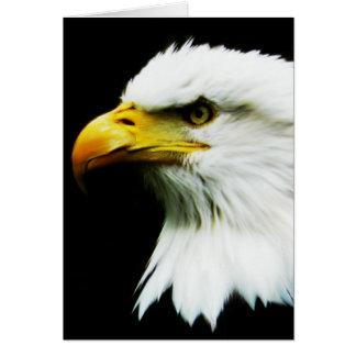 Carte Eagle chauve - photographie d'Eagle d'Américain