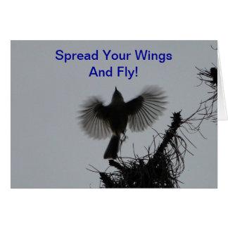 Carte Écartez vos ailes et mouche, mésange tuftée