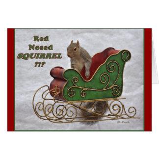 Carte Écureuil flairé rouge ? ! ?